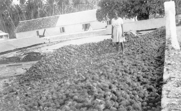 Coco Chagos