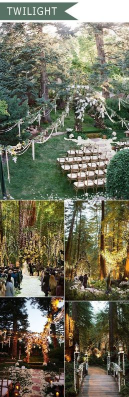 Bosque, Kozinart Catering Madrid