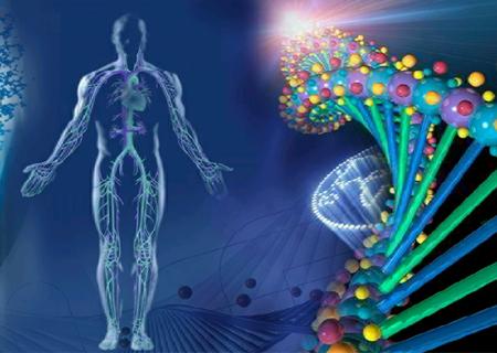 790-din-za-kompletnu-kvantnu-analizu-organizma-300-parametara-saveti-za-ishranu-kvantna-analiza-koze-saveti-za-tretmane-koze-lica-3939
