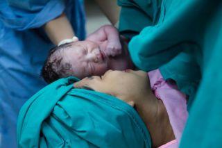 Oplođenjе, trudnoća i porodjaj