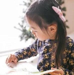 通信制幼児教材の比較、検討(年中用)ぷちドラゼミ、こどもちゃれんじ、Z会、ポピー