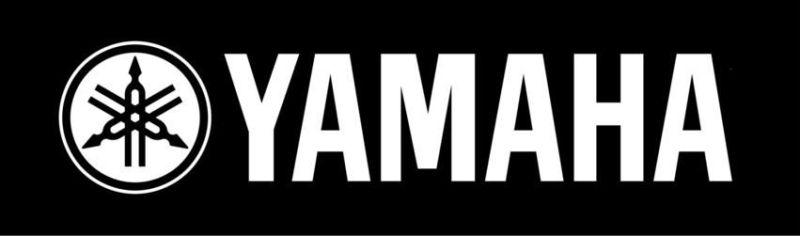 12 Best Acoustic Guitar Brands in 2021 (The Ultimate Chosen List) - yamaha Guitar
