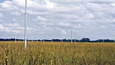 Photo of Ócsai lakópark, az ígéret földje…