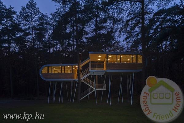 treehouse21