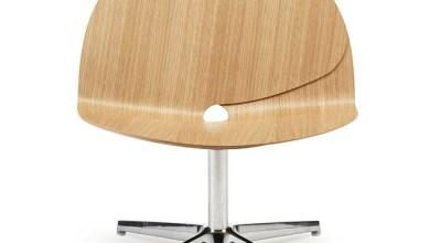Photo of Ginkgo fa ihlette szék