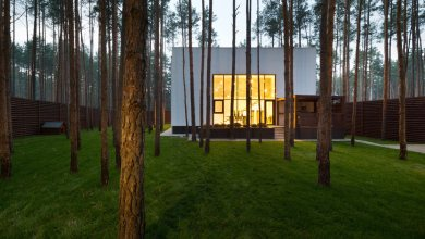 Photo of Kocka alakú ház az erdőben