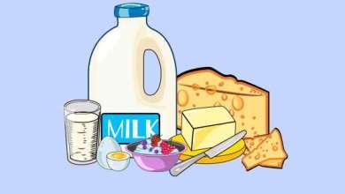 Photo of Hogyan tároljuk a tejtermékeket?