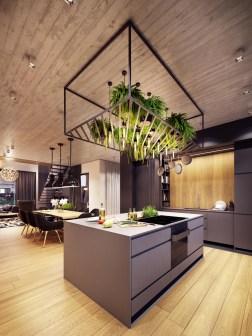hanging-interior-plants