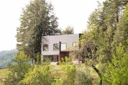 Holiday-home-in-Chile-surrounded-by-native-vegetation