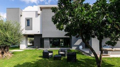 Photo of Családi ház citrus és olajfák védelmében