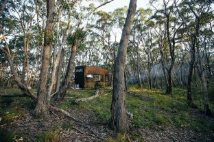 Into-the-forest-Tiny-Off-Grid-Cabin