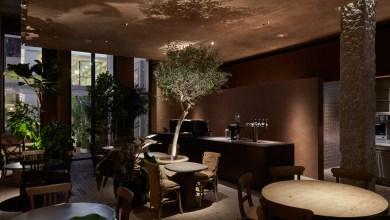 Photo of Különleges esztétikai élményt nyújt a Dubai Terra Cafe
