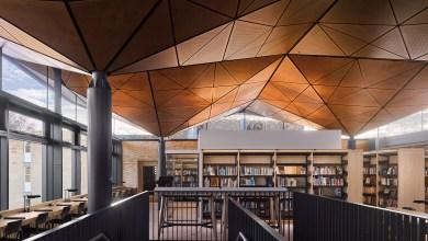 Photo of Lombkorona-szerű mennyezettel látták el az angol iskolai könyvtárát