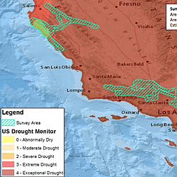 Tree Mortality In Southern California Forests