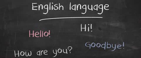 Writing in Plain Language