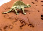 Fossil in Mud2