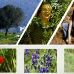 KKL-JNF – 110 years of green action