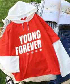 Pull BTS Young Forever 2