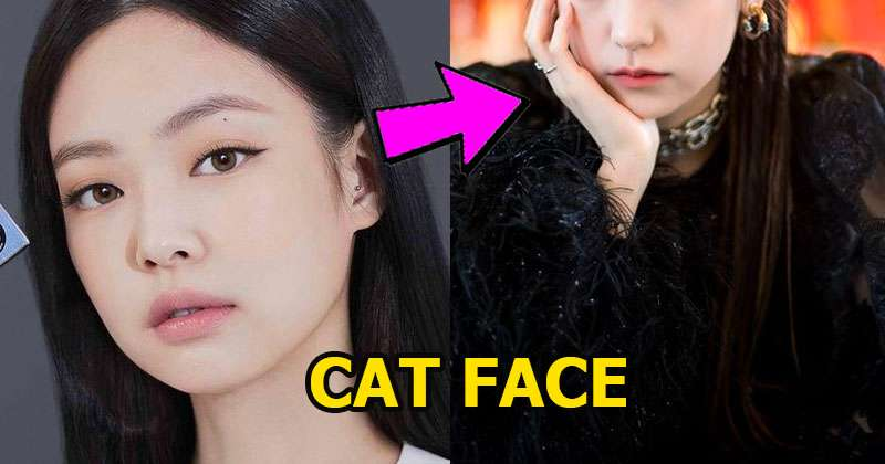 These Are 8 Favorite Cat Face Female Idols, Based on Dispatch