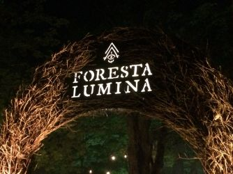 hay sign: Foresta Lumina