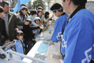 080307frontale07