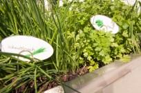 Bis zu 50 Prozent mehr Wachstum durch Speicherung der Sonnenenergie und optimale Versorgung der Pflanzen mit natürlichen Nähr- und Aufbaustoffen