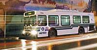 Capitol Metro Bus