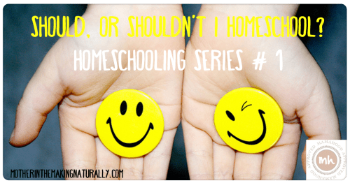 Homeschooling #1: Should, or shouldn't I homeschool?