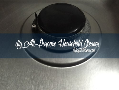 DIY All-in-One Household Cleaner for less than a Rand!