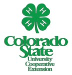 csu-extension-300-BEST