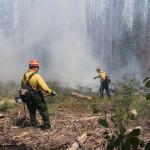 Beaver Creek Fire 2