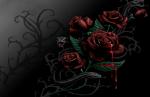 Маја (приказна за волшебното цвеќе) - А. Лефкоска