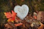 Како пркоси љубовта? – Елена Николоска