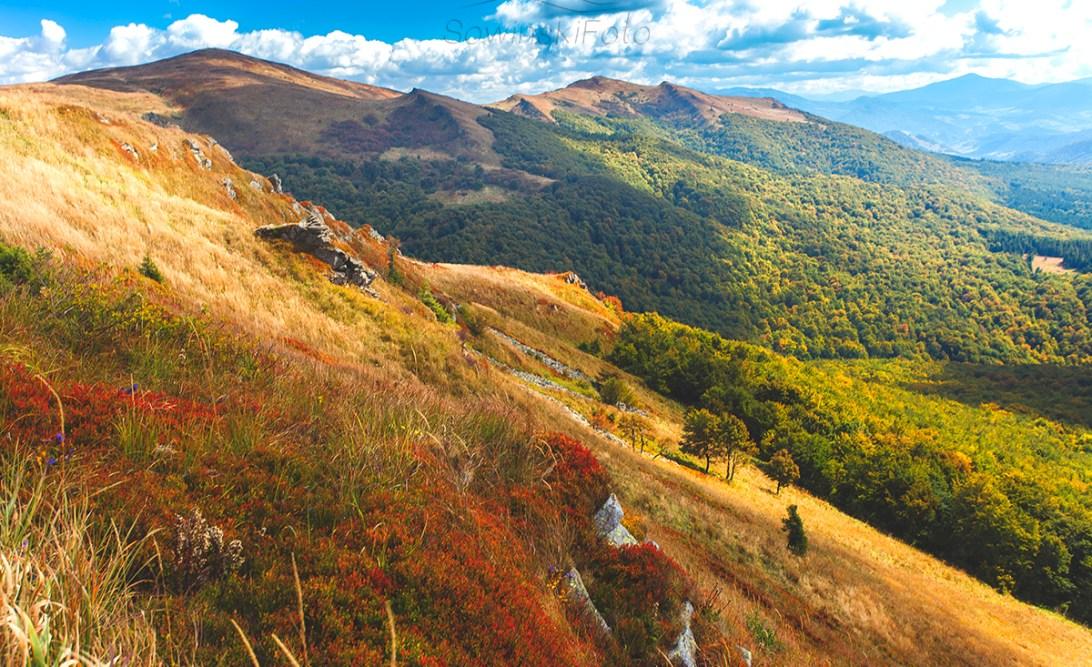 Krajobraz Bieszczady zdjęcie