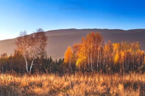 Krajobraz Babia Lipnica zdjęcie