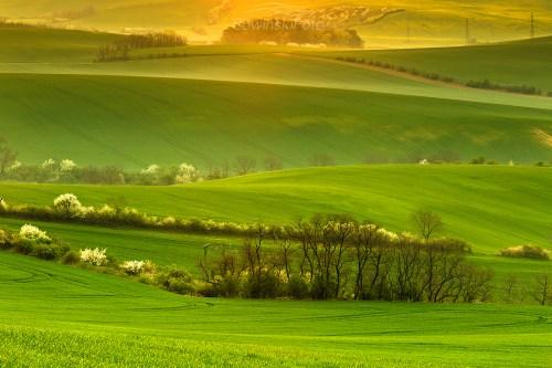Dekoracja wnętrz wiosna Morawy
