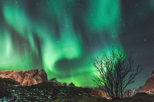 Zorza polarna Norwegia Malowane niebo/ Norwegia