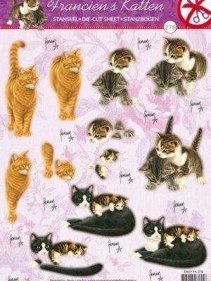 stansvel franciens katten 2