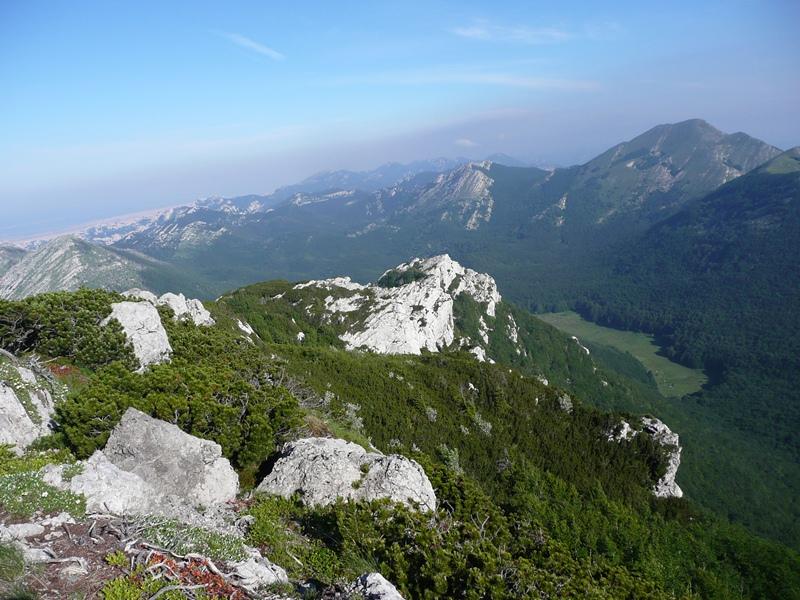 Kozjak (1572 m)