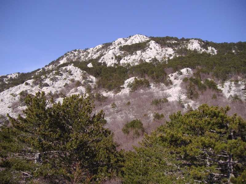 Liščeve grede (1311 m)