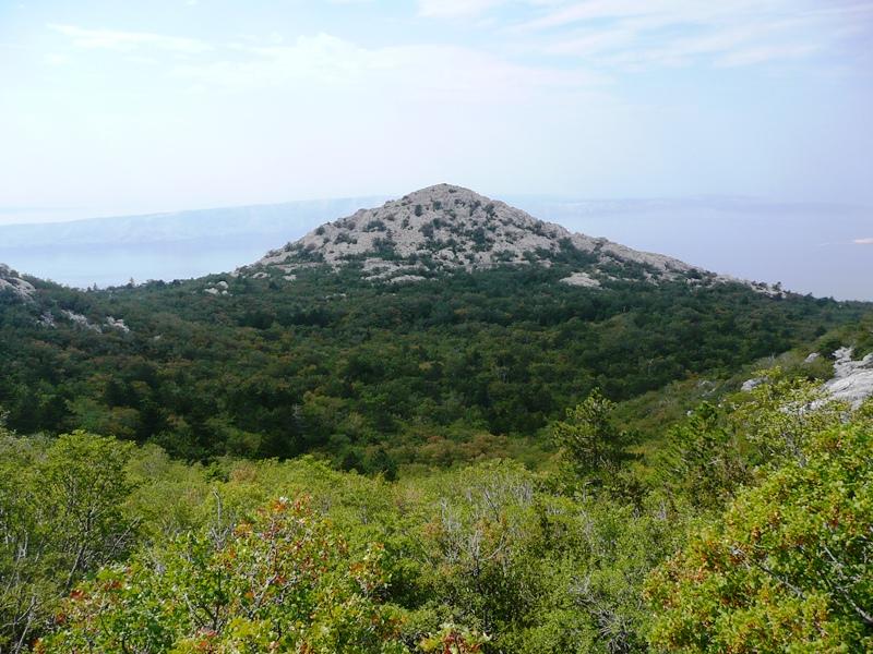 Rastovac i Rastovačka glavica (835 m)