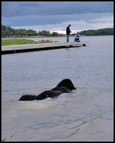 En av de bästa simmare jag sett. Flyter på vattnet