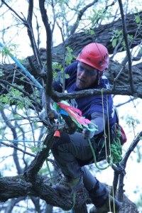 81aee climbing