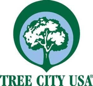 treecity1