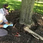 PHC Collar Excavation