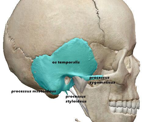 temporalni-oblast