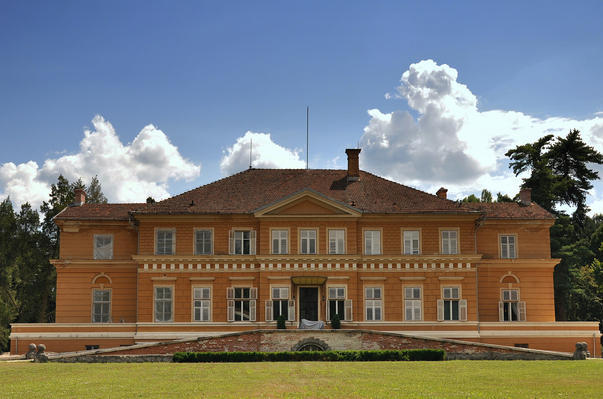 castelul-savarsin