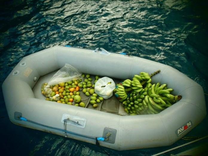Loď plná ovoce