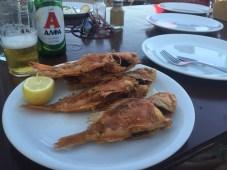 Ryby u Dimitriho
