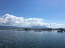 Mesolongi laguna